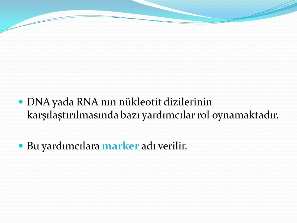 DNA yada RNA nın nükleotit dizilerinin karşılaştırılmasında bazı yardımcılar rol oynamaktadır.