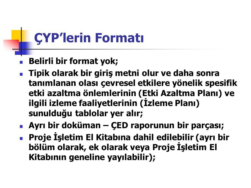 ÇYP'lerin Formatı Belirli bir format yok;