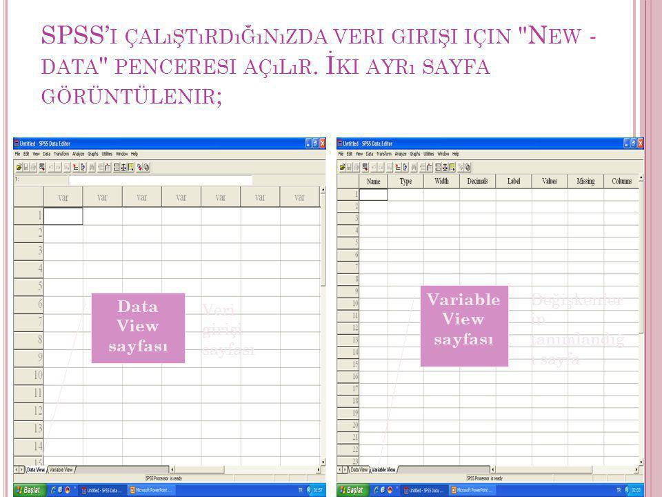 SPSS'i çalıştırdığınızda veri girişi için New -data penceresi açılır