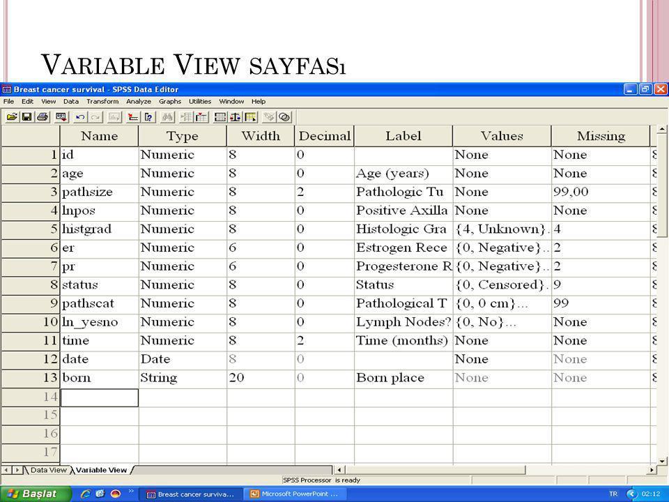 Variable View sayfası