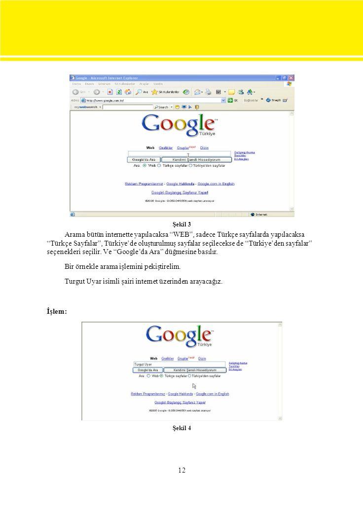 Şekil 3 Arama bütün internette yapılacaksa WEB , sadece Türkçe sayfalarda yapılacaksa.