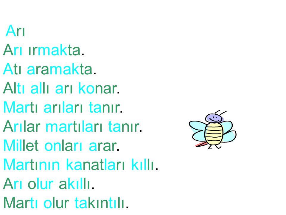Arılar martıları tanır. Millet onları arar. Martının kanatları kıllı.