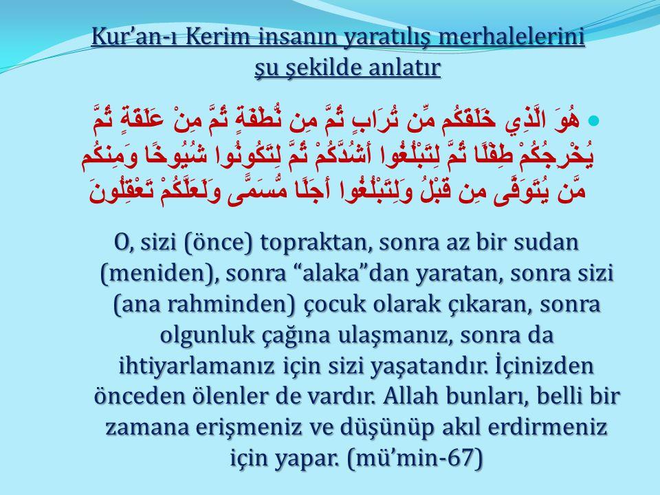 Kur'an-ı Kerim insanın yaratılış merhalelerini şu şekilde anlatır