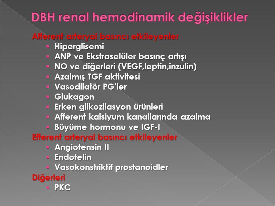 DBH renal hemodinamik değişiklikler