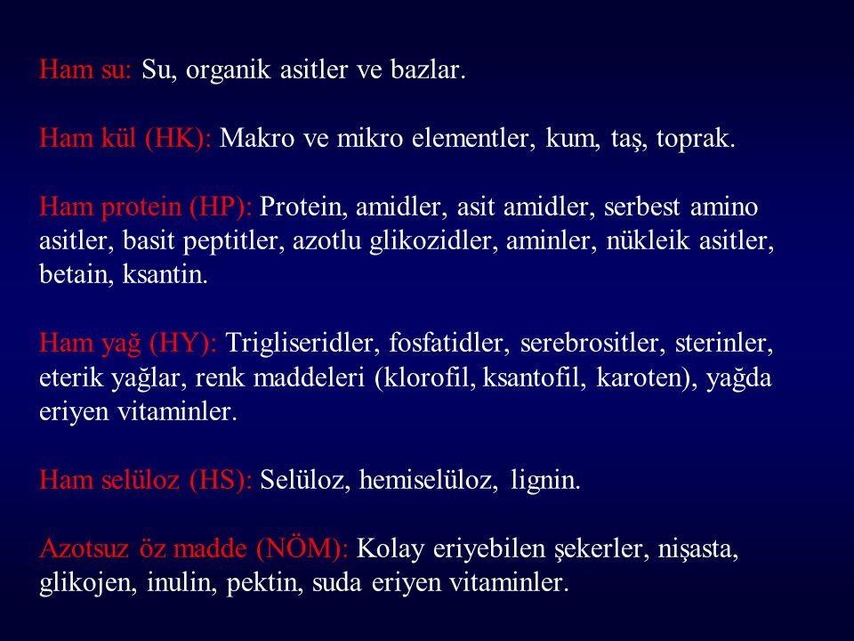 Ham su: Su, organik asitler ve bazlar