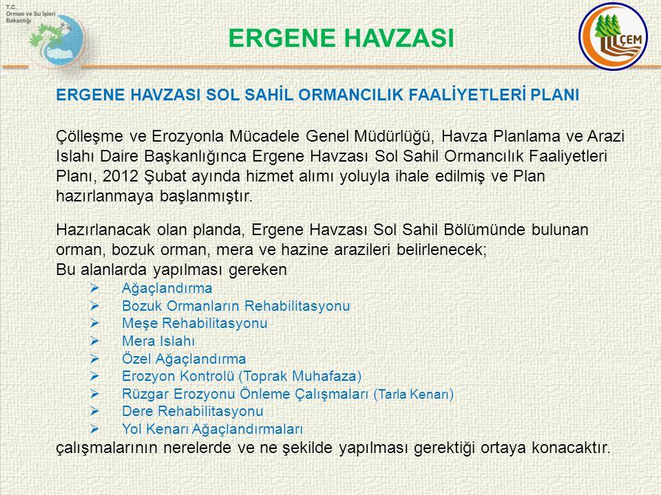 ERGENE HAVZASI ERGENE HAVZASI SOL SAHİL ORMANCILIK FAALİYETLERİ PLANI