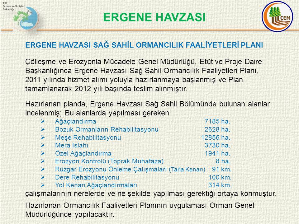 ERGENE HAVZASI ERGENE HAVZASI SAĞ SAHİL ORMANCILIK FAALİYETLERİ PLANI
