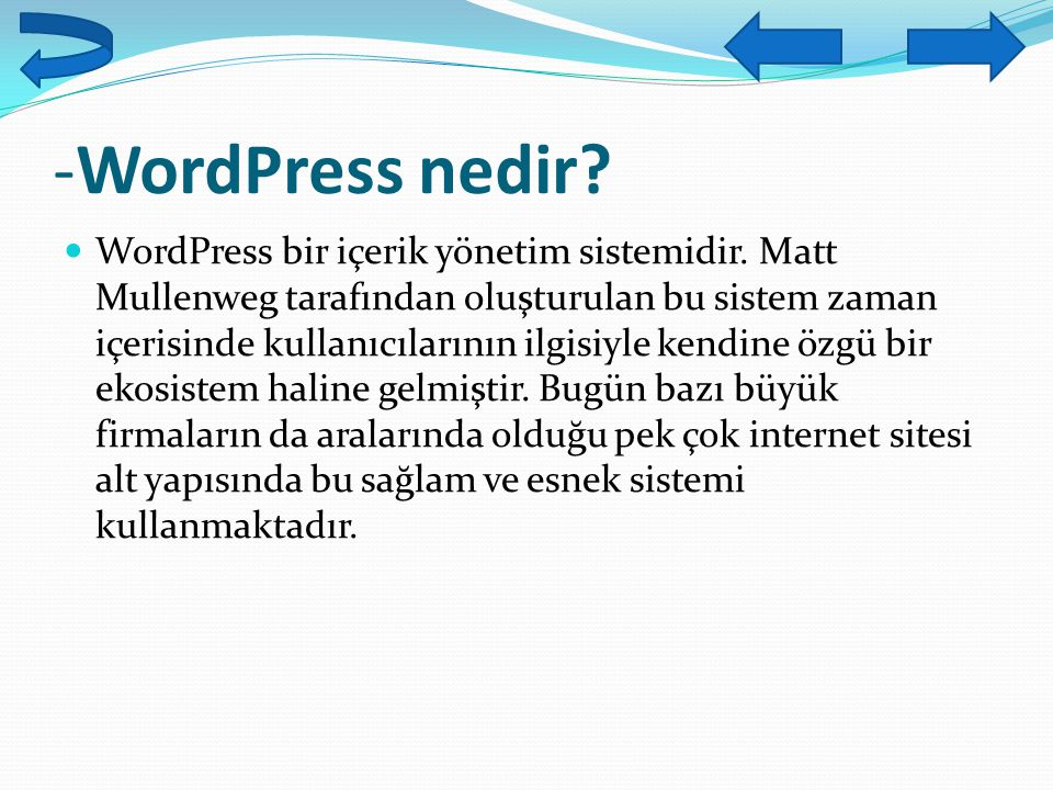 -WordPress nedir