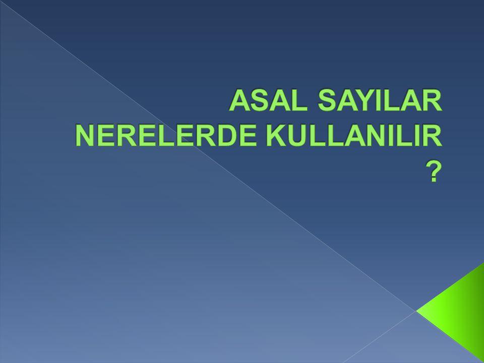 ASAL SAYILAR NERELERDE KULLANILIR