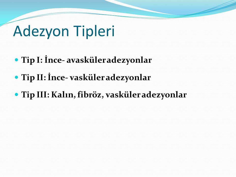 Adezyon Tipleri Tip I: İnce- avasküler adezyonlar