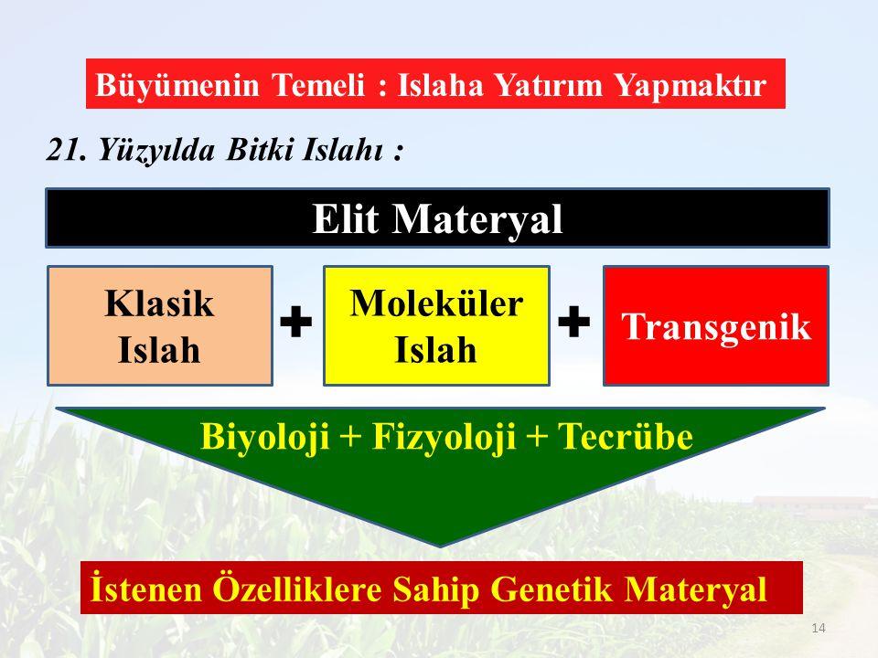 + + Elit Materyal Klasik Islah Moleküler Islah Transgenik