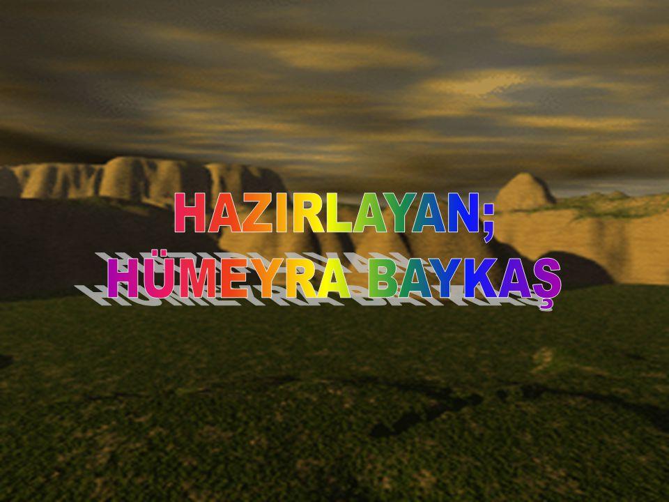 HAZIRLAYAN; HÜMEYRA BAYKAŞ