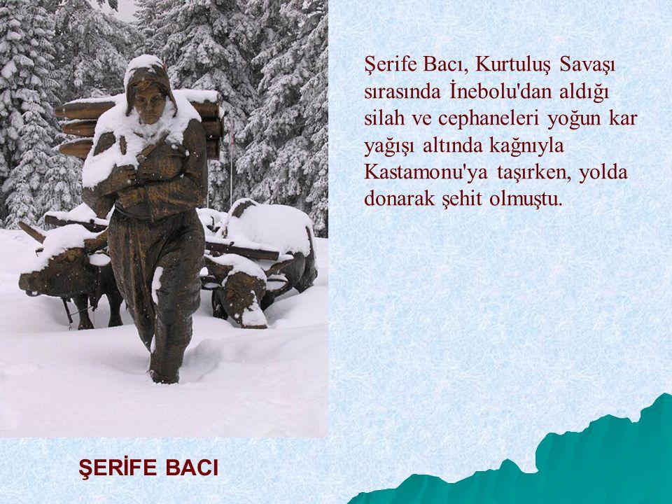 Şerife Bacı, Kurtuluş Savaşı sırasında İnebolu dan aldığı silah ve cephaneleri yoğun kar yağışı altında kağnıyla Kastamonu ya taşırken, yolda donarak şehit olmuştu.