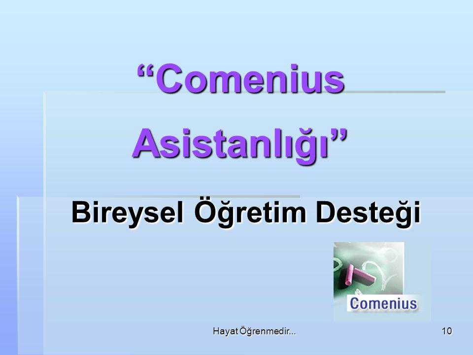 Comenius Asistanlığı Bireysel Öğretim Desteği