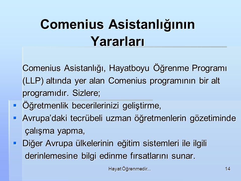 Comenius Asistanlığının Yararları