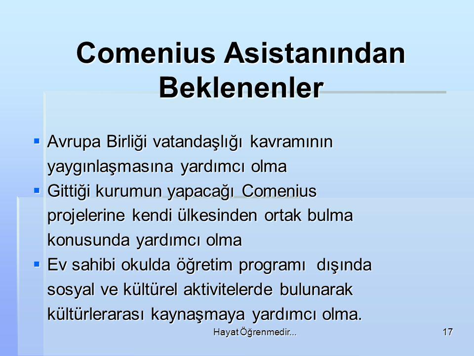 Comenius Asistanından Beklenenler