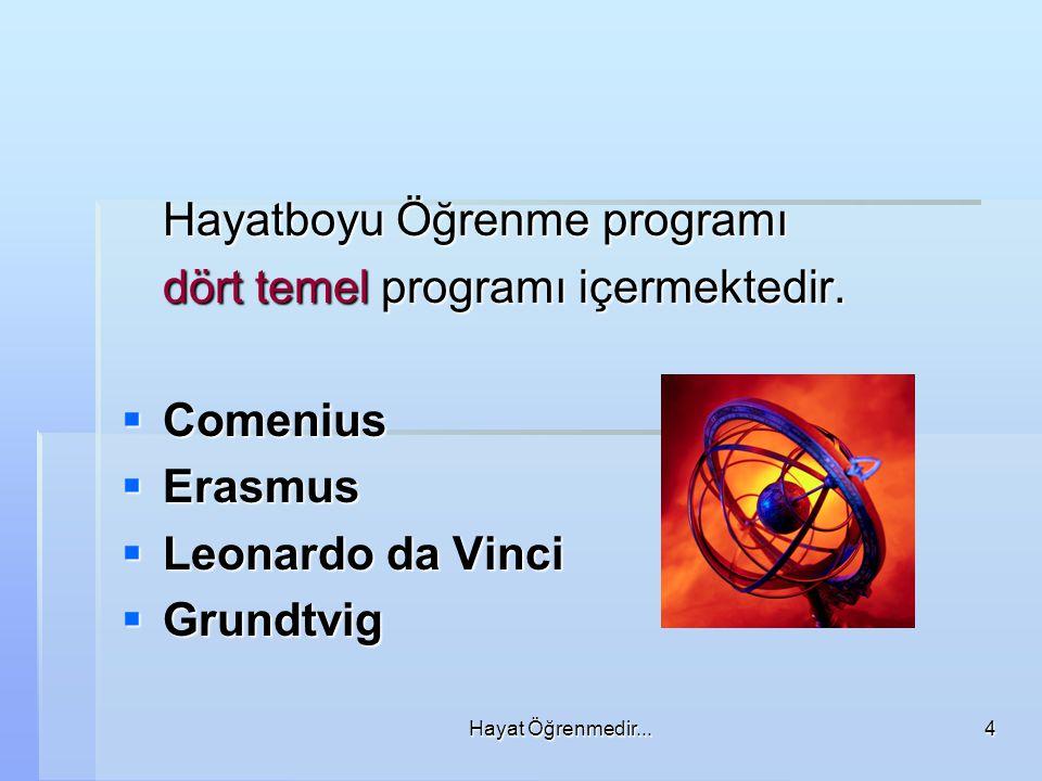 Hayatboyu Öğrenme programı dört temel programı içermektedir. Comenius