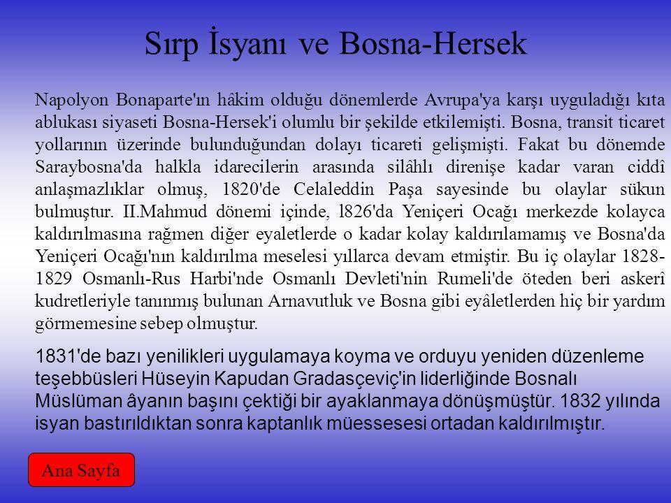 Sırp İsyanı ve Bosna-Hersek