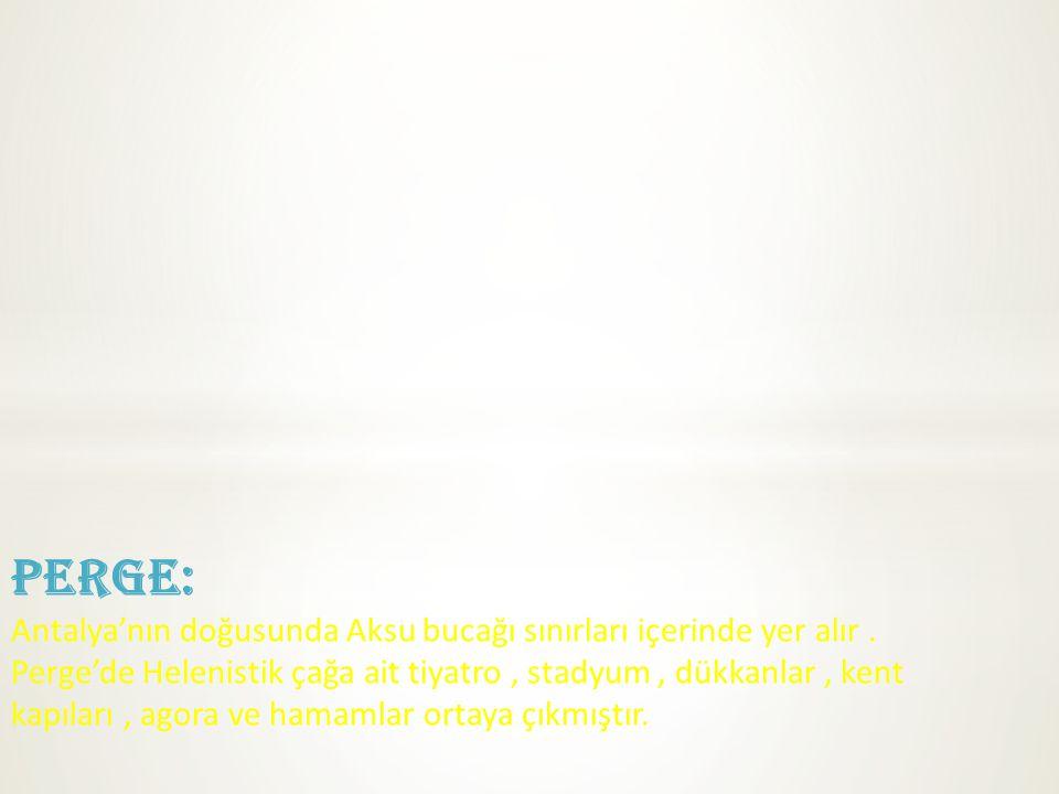 PERGE: