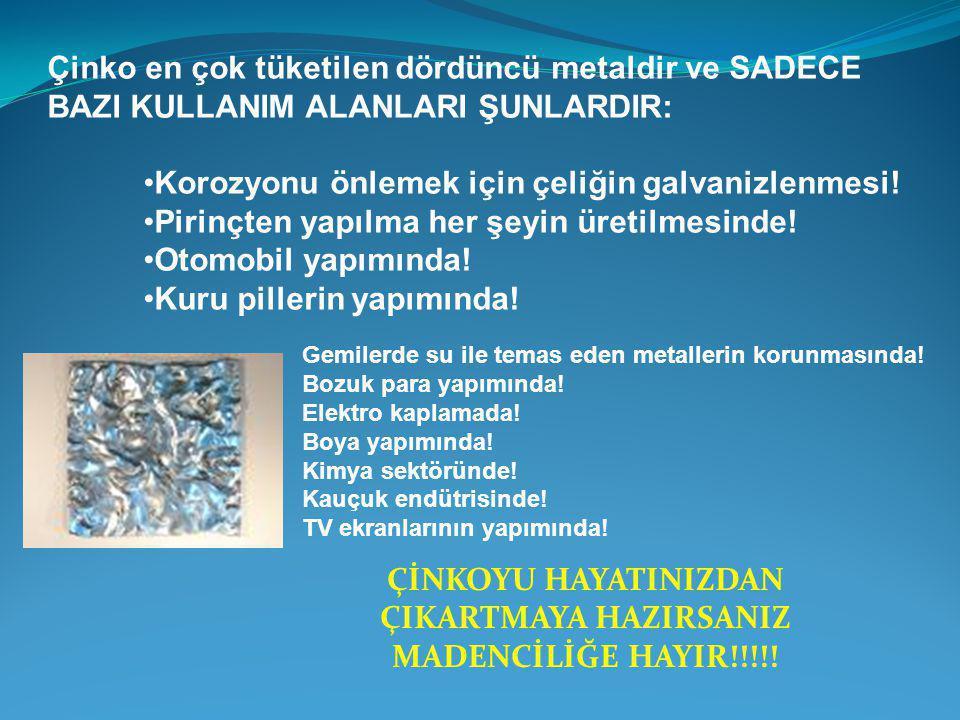 ÇİNKOYU HAYATINIZDAN ÇIKARTMAYA HAZIRSANIZ MADENCİLİĞE HAYIR!!!!!