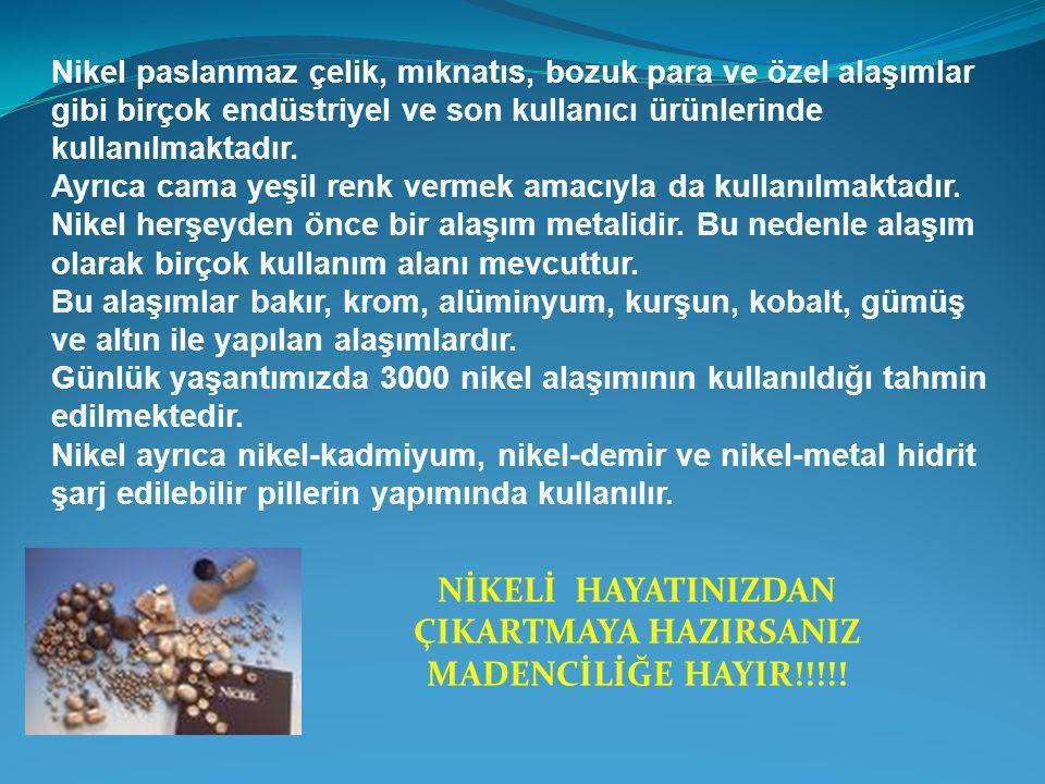 NİKELİ HAYATINIZDAN ÇIKARTMAYA HAZIRSANIZ MADENCİLİĞE HAYIR!!!!!