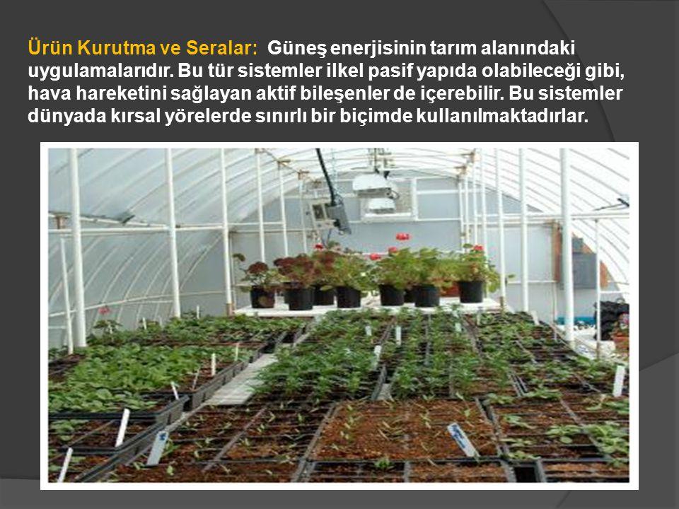 Ürün Kurutma ve Seralar: Güneş enerjisinin tarım alanındaki uygulamalarıdır.