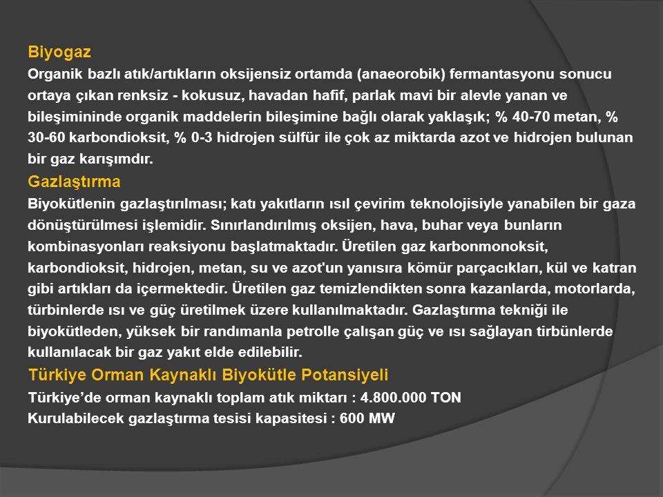 Türkiye Orman Kaynaklı Biyokütle Potansiyeli