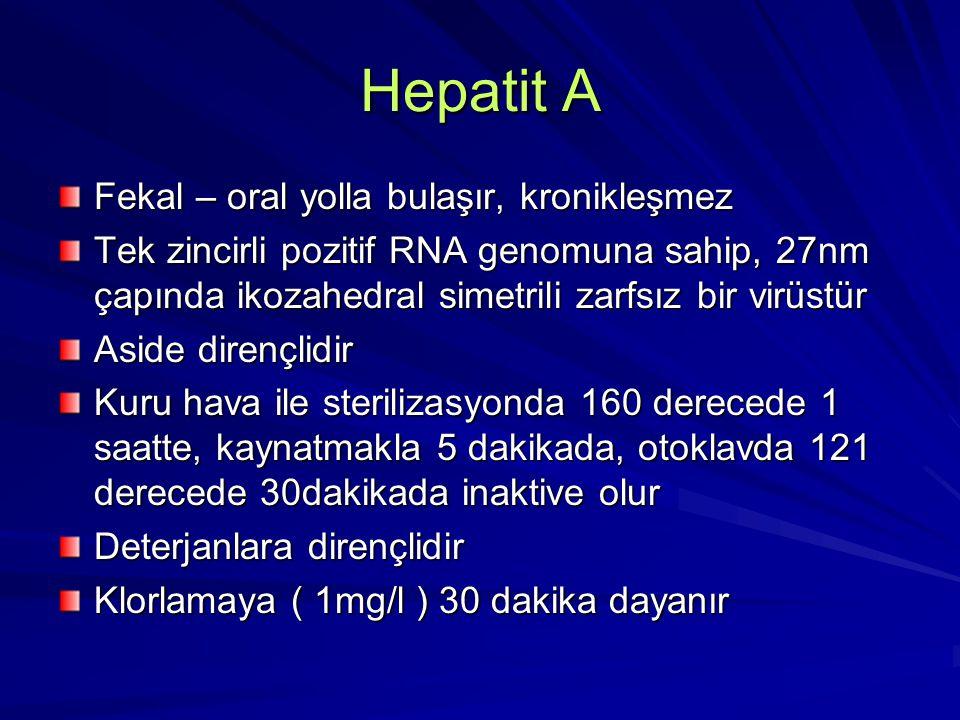 Hepatit A Fekal – oral yolla bulaşır, kronikleşmez