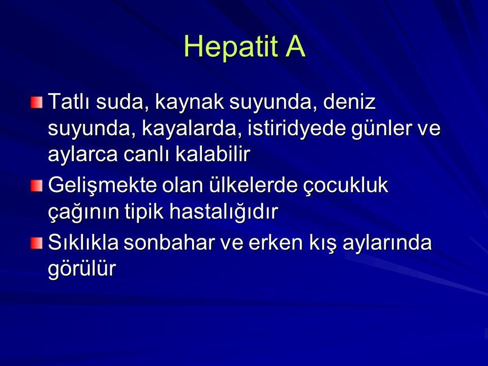 Hepatit A Tatlı suda, kaynak suyunda, deniz suyunda, kayalarda, istiridyede günler ve aylarca canlı kalabilir.