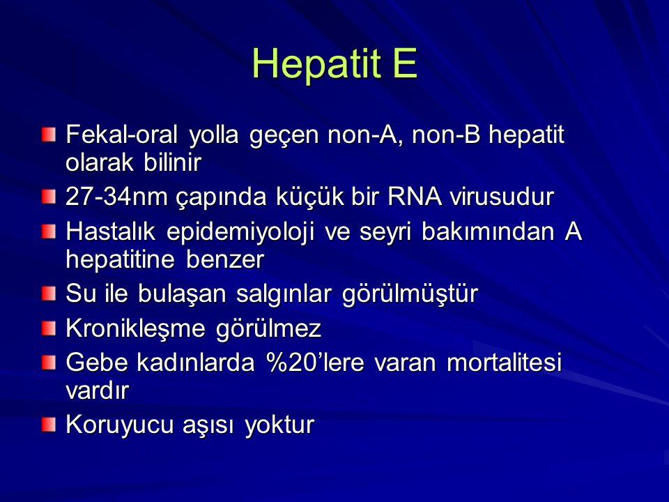 Hepatit E Fekal-oral yolla geçen non-A, non-B hepatit olarak bilinir