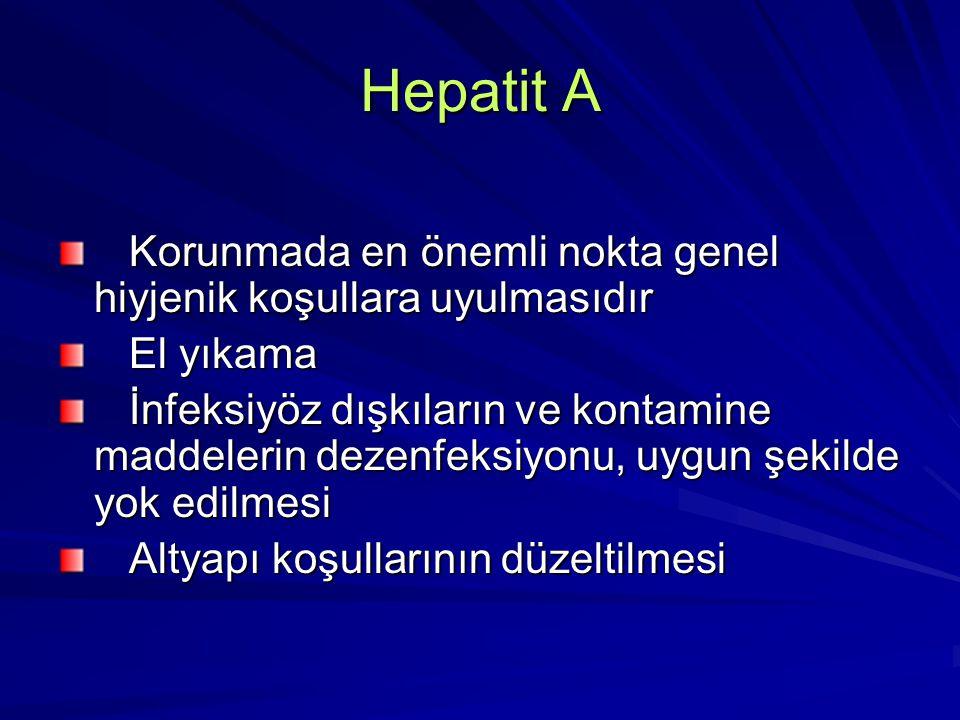Hepatit A Korunmada en önemli nokta genel hiyjenik koşullara uyulmasıdır. El yıkama.