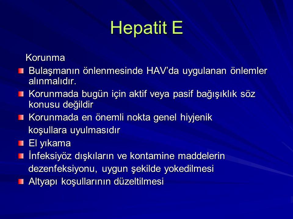 Hepatit E Korunma. Bulaşmanın önlenmesinde HAV'da uygulanan önlemler alınmalıdır.