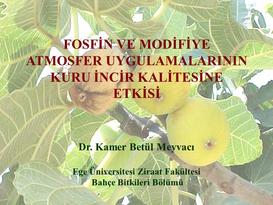 Ege Üniversitesi Ziraat Fakültesi Bahçe Bitkileri Bölümü