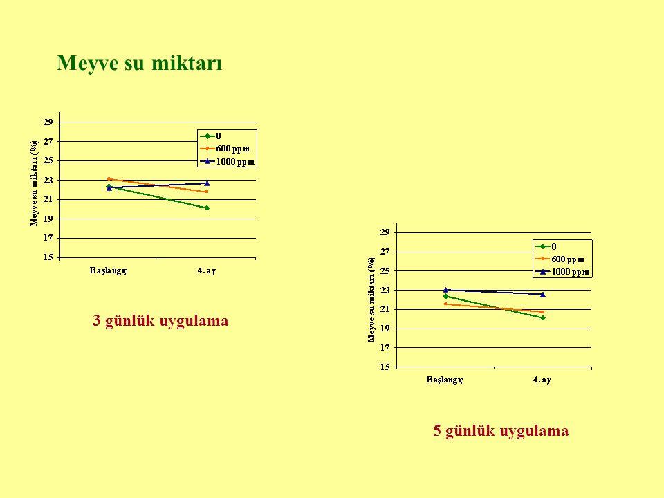 Meyve su miktarı 3 günlük uygulama 5 günlük uygulama