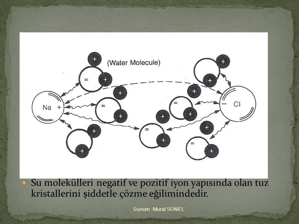 3. April 2017 Suyun Hidratasyonu. Su molekülleri negatif ve pozitif iyon yapısında olan tuz kristallerini şiddetle çözme eğilimindedir.