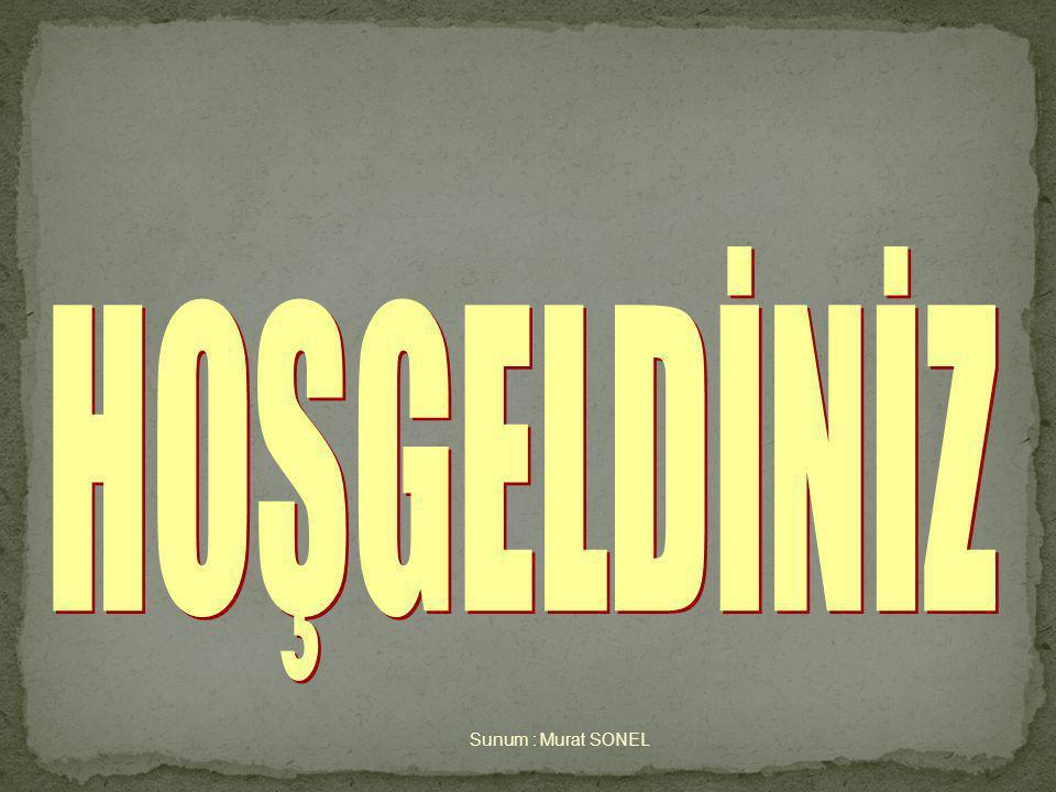 HOŞGELDİNİZ Sunum : Murat SONEL