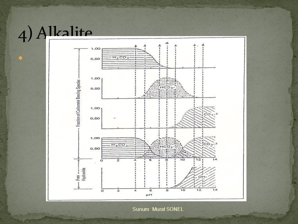 4) Alkalite Sunum : Murat SONEL