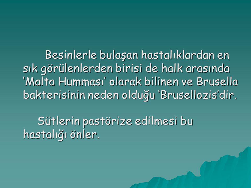 Besinlerle bulaşan hastalıklardan en sık görülenlerden birisi de halk arasında 'Malta Humması' olarak bilinen ve Brusella bakterisinin neden olduğu 'Brusellozis'dir.