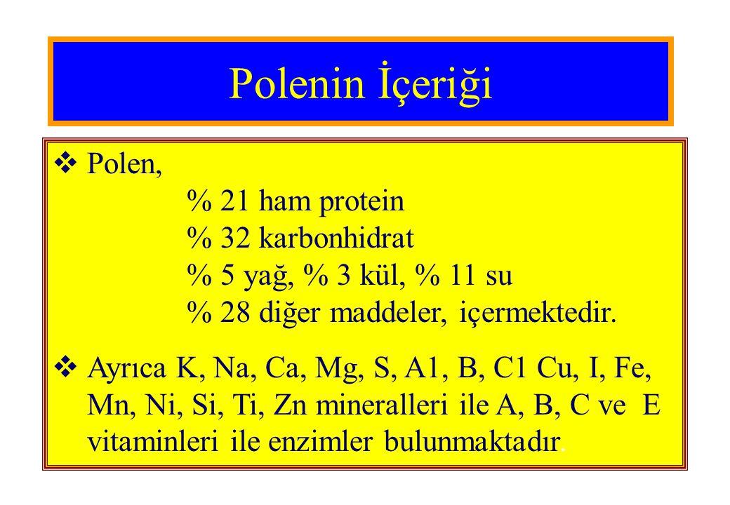 Polenin İçeriği Polen, % 21 ham protein % 32 karbonhidrat