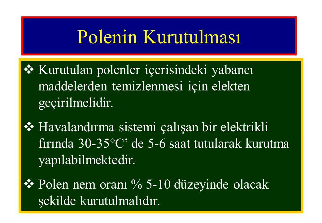 Polenin Kurutulması Kurutulan polenler içerisindeki yabancı maddelerden temizlenmesi için elekten geçirilmelidir.