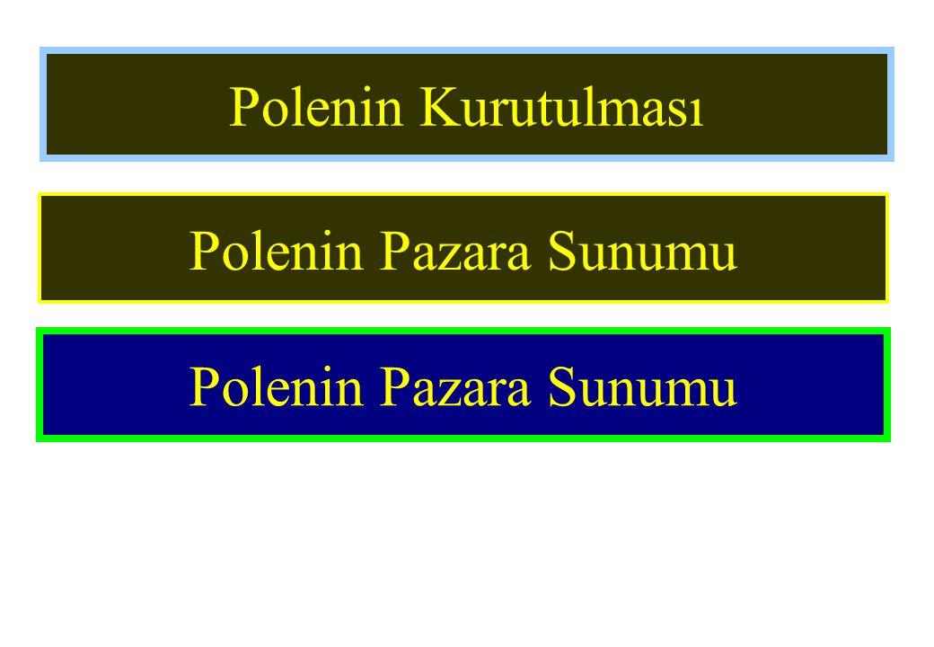 Polenin Kurutulması Polenin Pazara Sunumu Polenin Pazara Sunumu
