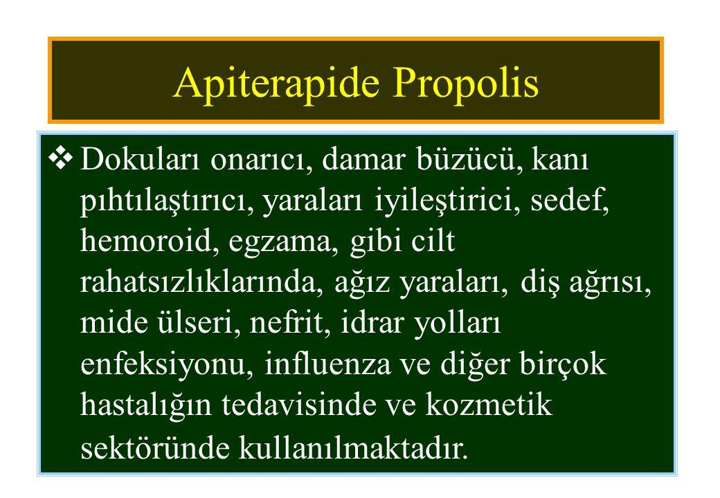 Apiterapide Propolis