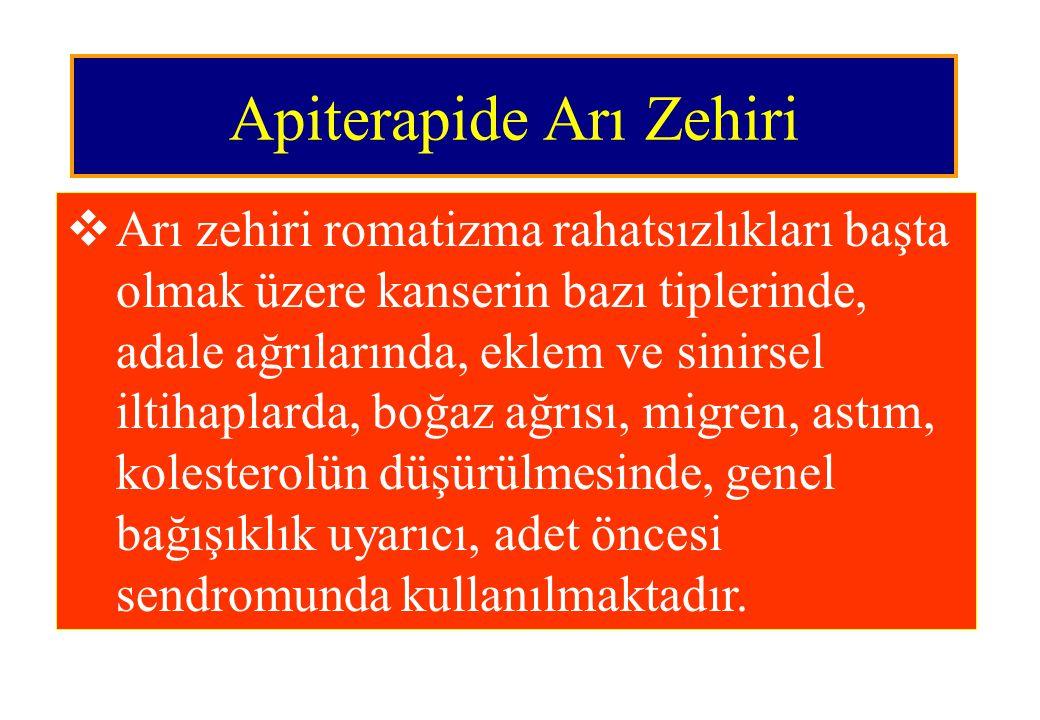 Apiterapide Arı Zehiri