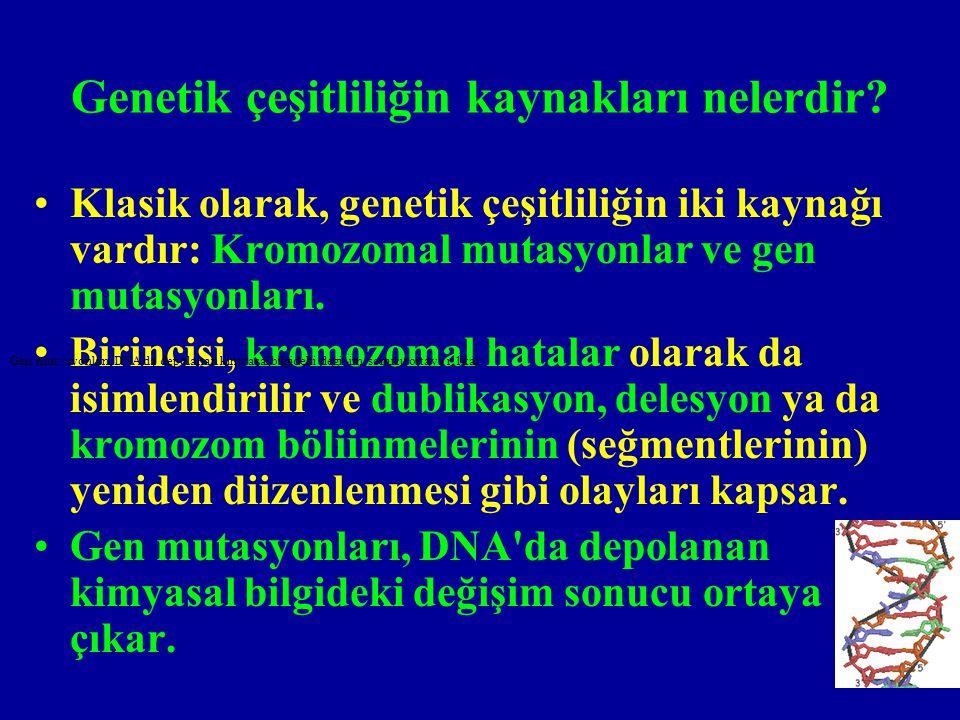 Genetik çeşitliliğin kaynakları nelerdir