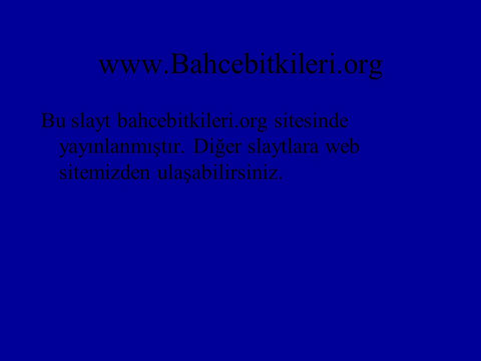 www.Bahcebitkileri.org Bu slayt bahcebitkileri.org sitesinde yayınlanmıştır.