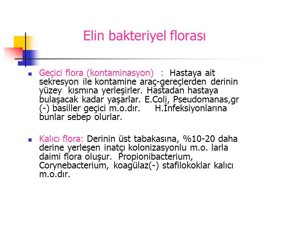 Elin bakteriyel florası