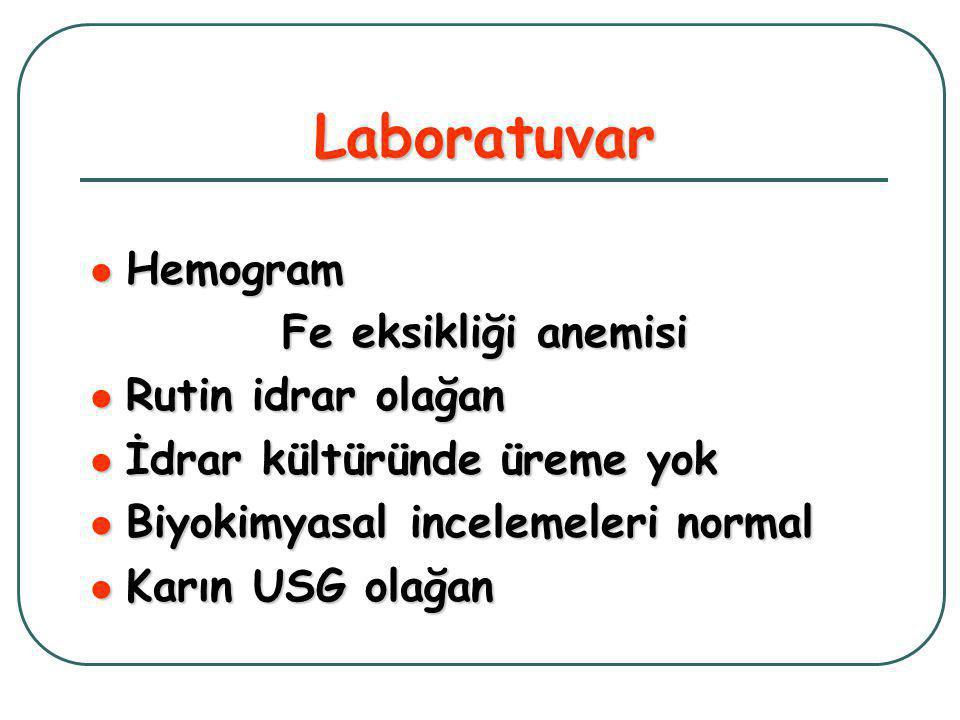 Laboratuvar Hemogram Fe eksikliği anemisi Rutin idrar olağan