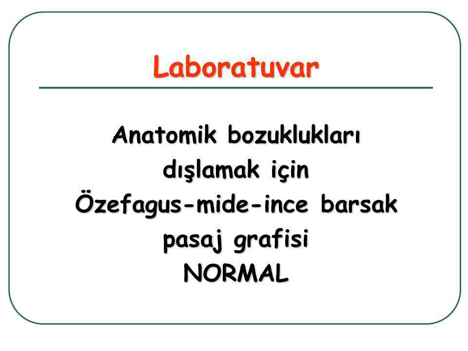 Anatomik bozuklukları Özefagus-mide-ince barsak