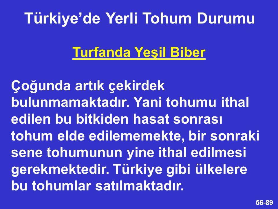 Türkiye'de Yerli Tohum Durumu