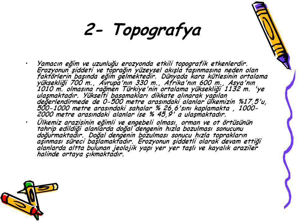 2- Topografya